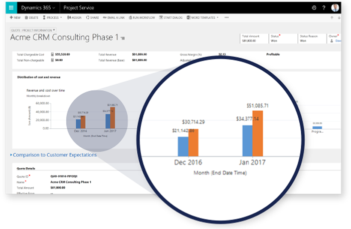 Screenshot Microsoft Dynamics Project Service