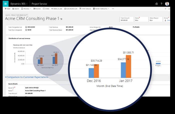 Screenshot Microsoft Dynamics Project Service